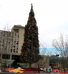 Mayors tree 2001